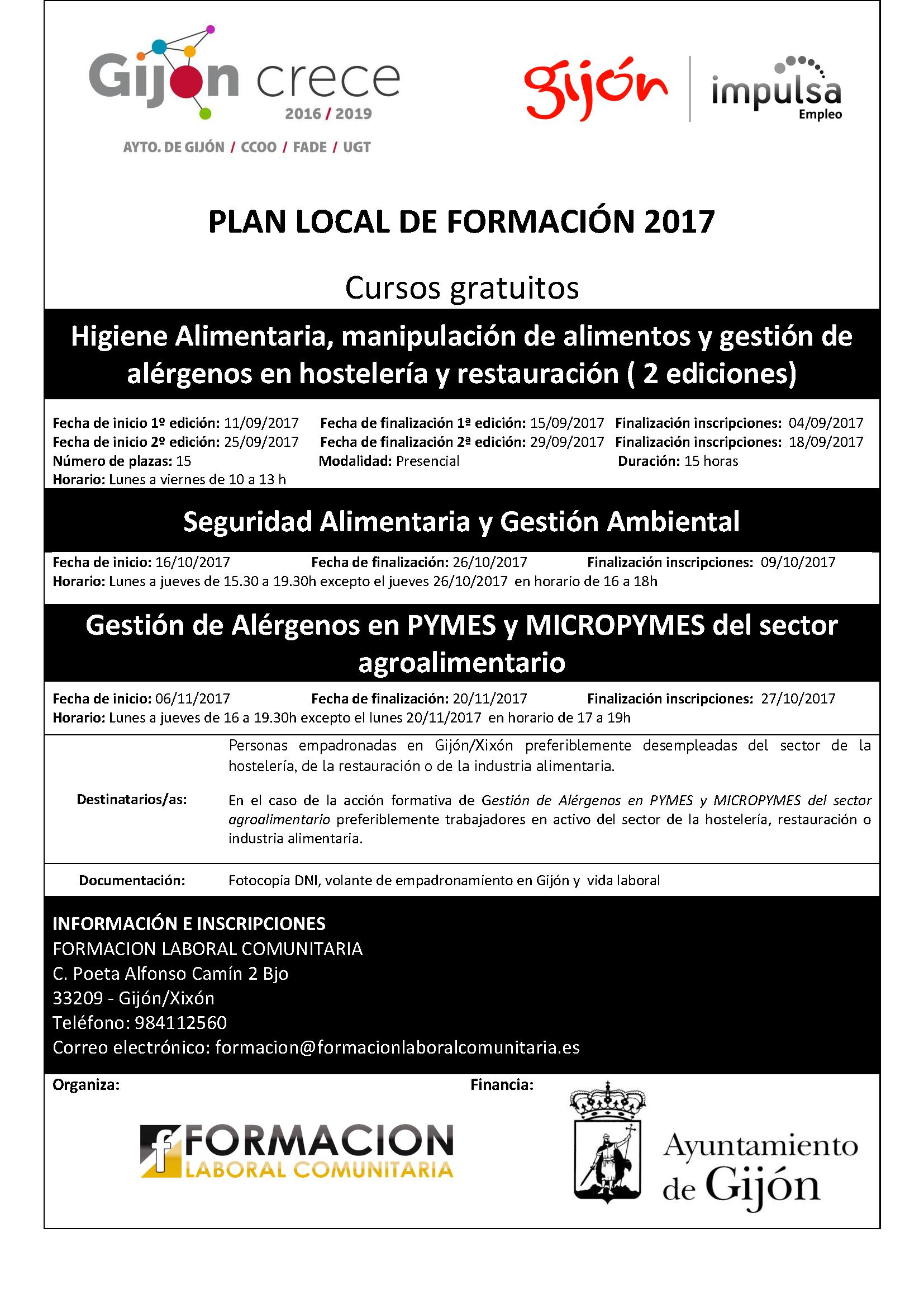 Plan local formación Gijón 2017